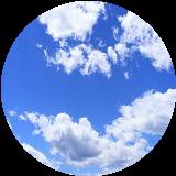 梓弓の雲龍